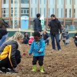 Agnes-Denes-Wheatfield-courtesy-Fondazione-Riccardo-Catella-Milano-05