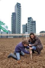 Agnes-Denes-Wheatfield-courtesy-Fondazione-Riccardo-Catella-Milano-06
