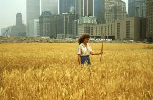 wheatart