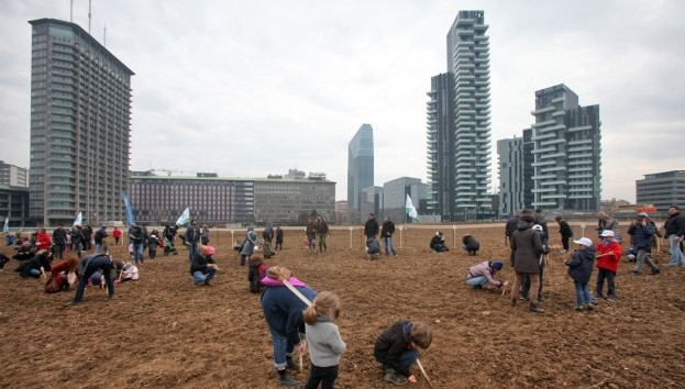 """Video """"Milano, tra i grattacieli spunta Wheatfield, l'arte in un campo di grano"""""""