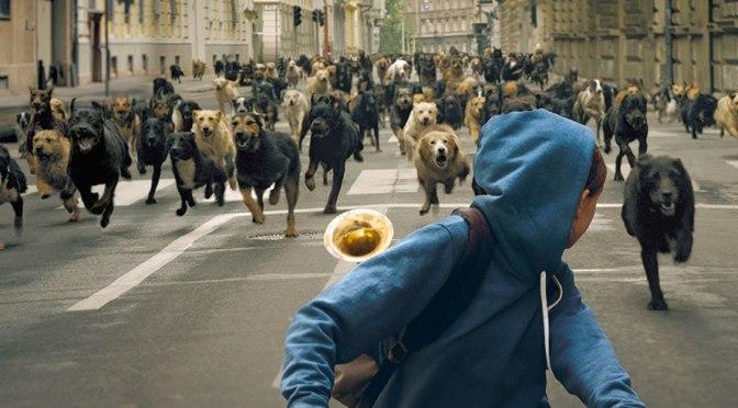 """Cinema: """"White God"""", l'Ungheria di ieri e oggi nella storia di un cane e di una ragazzina"""
